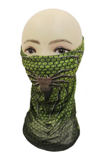 Load image into Gallery viewer, Head Mask-052
