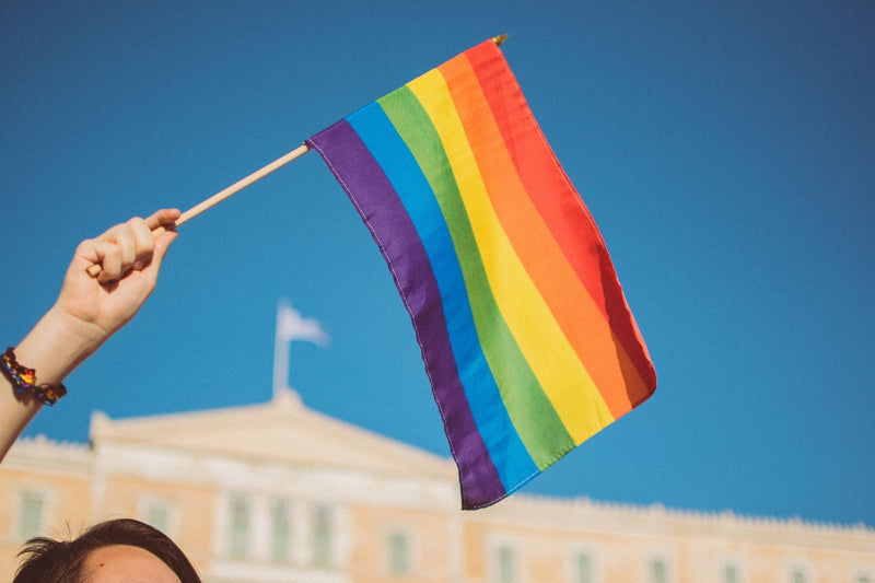 It's Pride Month: Taking a Look at the Gay-Straight Alliance on College Campuses