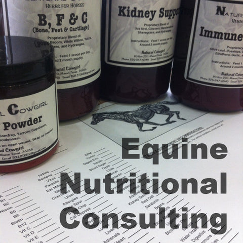 Equine Nutritional Consulting