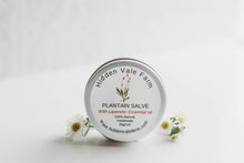 Load image into Gallery viewer, 100% Natural, Plantain Salve, Handmade with Beeswax, helpful for Bug Bites - Hidden Vale Farm