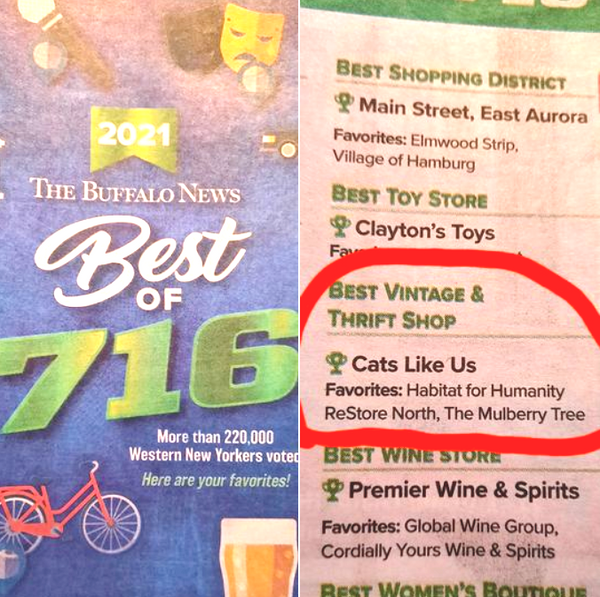 Best of 716 Best Vintage awarded to Cats Like Us
