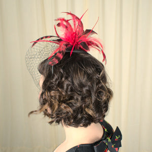 Black & Red Fascinator Headband