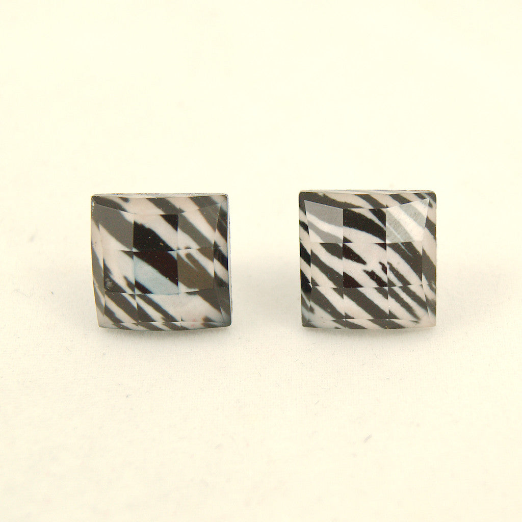 Zebra Faceted Earrings - Cats Like Us