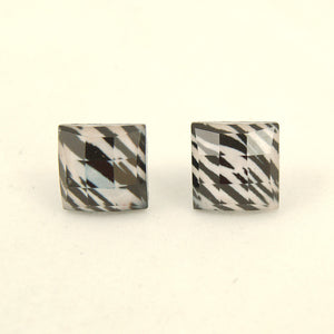 Zebra Faceted Earrings by Cats Like Us : Cats Like Us