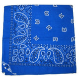 Blue Traditional Bandana - Cats Like Us