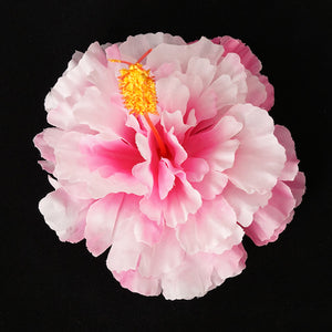 Pink Hawaiian Hibiscus Flower by Lila Jo : Cats Like Us