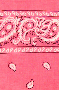 Hot Pink Bandana by Viva Dulce Marina : Cats Like Us