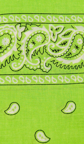 Lime Green Bandana by Viva Dulce Marina : Cats Like Us