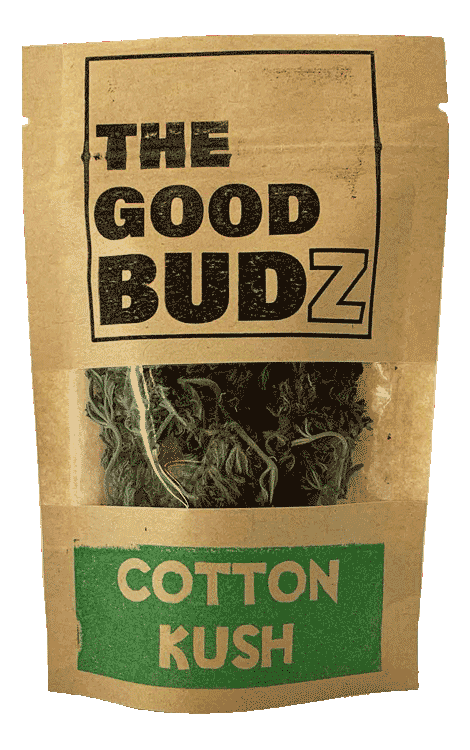"""Cotton Kush V2"" Hemp Flowers Tea UK - The Good Budz"