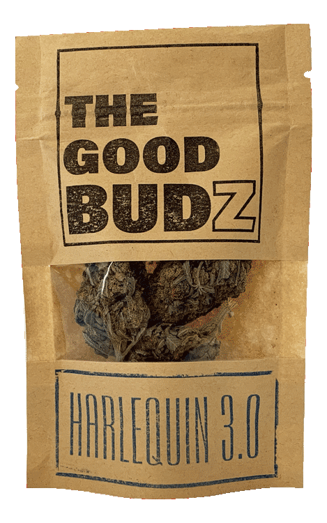 """Harlequin 3.0"" Hemp Flower Tea UK - The Good Budz"