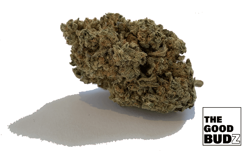 """White Russian"" Hemp Flower Tea UK - The Good Budz"