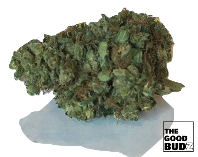 """Vanilla Kush"" Hemp Flowers Tea UK - The Good Budz"