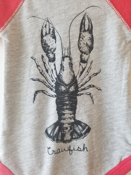 CRAWFISH Kids Raglan