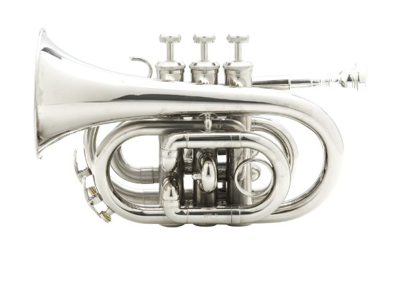 Top 10 Professional Trumpet Brands in 2020