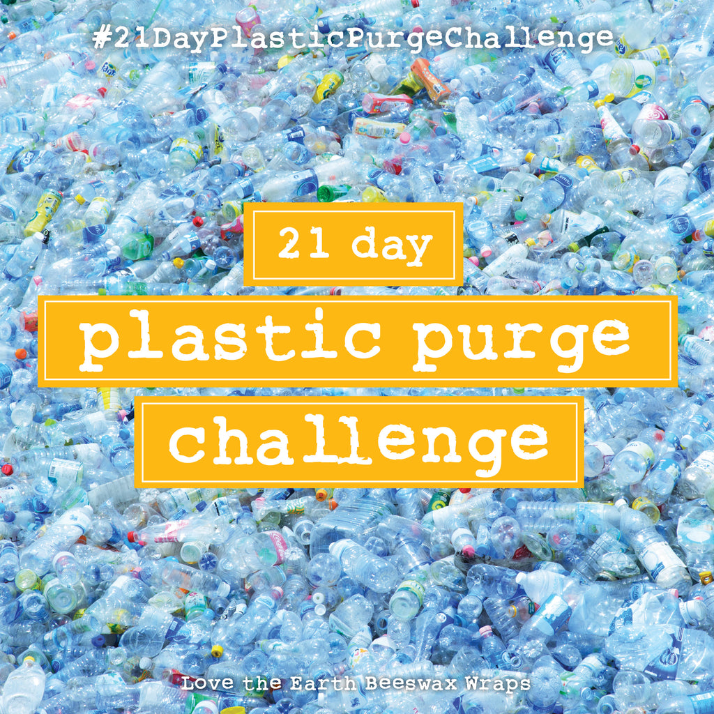 21 Day Plastic Purge Challenge – WEEK 1