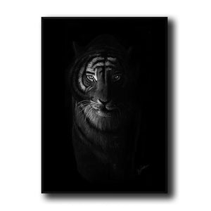 Tiger in the dark