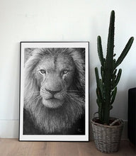 Load image into Gallery viewer, Lion Stare