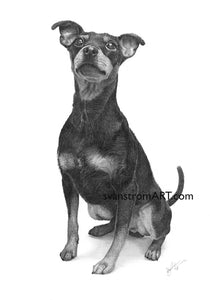 Commission - Dog portrait - Julle - 2017