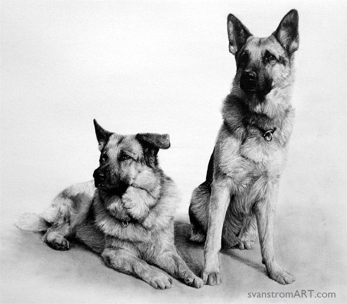 Commission - Dogs portrait - Zeb & Ricco - 2007
