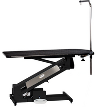 Load image into Gallery viewer, PetLift Masterlift LowRider Electric Table with Rotating Post