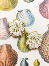 Load image into Gallery viewer, Seashell Studs