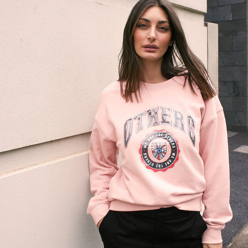 The Others Vintage Varsity Sweater (Pink)