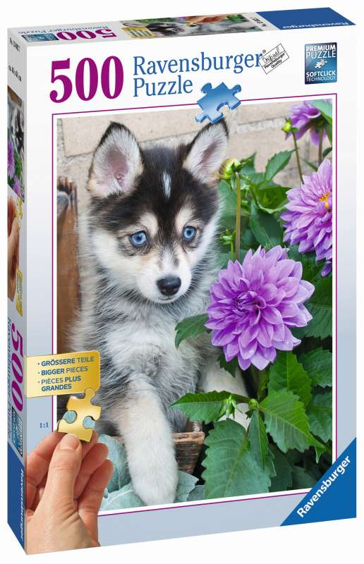 Cute Husky 500pc Puzzle - Ravensburger