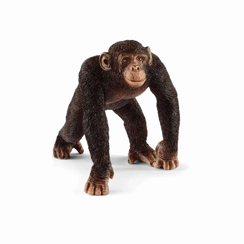 Chimpanzee Male - Schleich