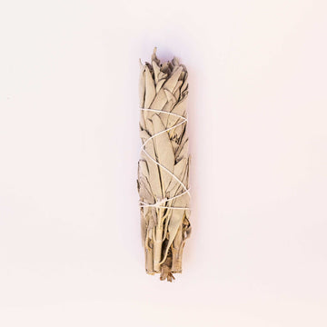 White Sage Smudge Stick - One Piece