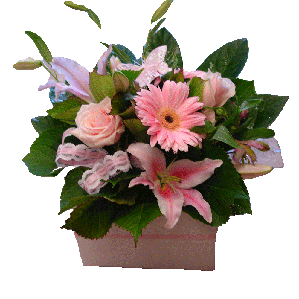 Boxed pink flowers