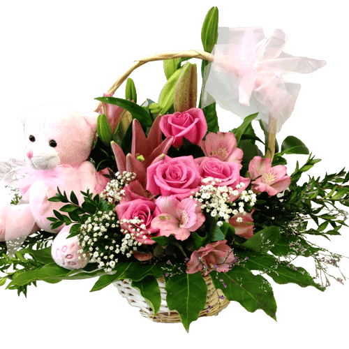 Basket Arrangement for baby girl, baby, hospital, congratulations,