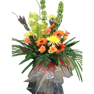 Modern Arrangement, Bright colours, Vase arrangement, Burst of joy, Happy, Get well