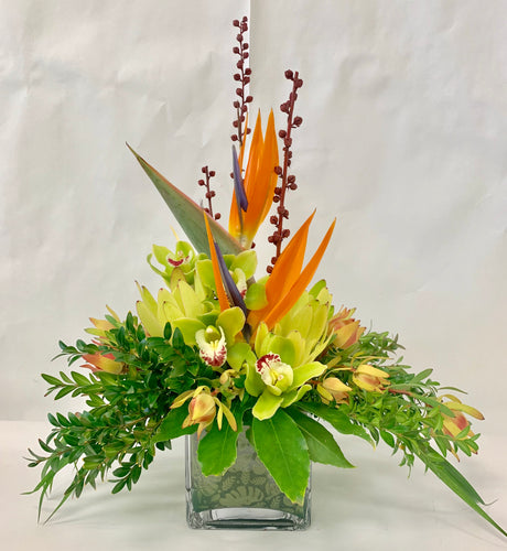 Tropical Arrangement, Birthday, Get well, Hospital, Modern home, Corporate