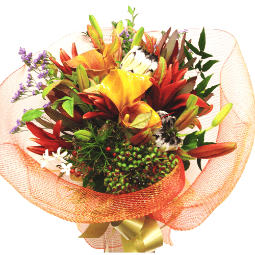 Modern flowers, get well, hospital, retirement, Birthday, Whanau, Bouquets, Anniversary,
