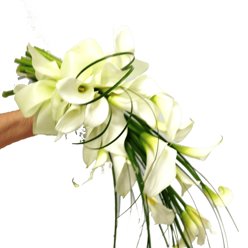 Gathered lilles,  Wedding, Bride, Bridesmaid, Wedding celebration, Wedding flowers, Wedding bouquet