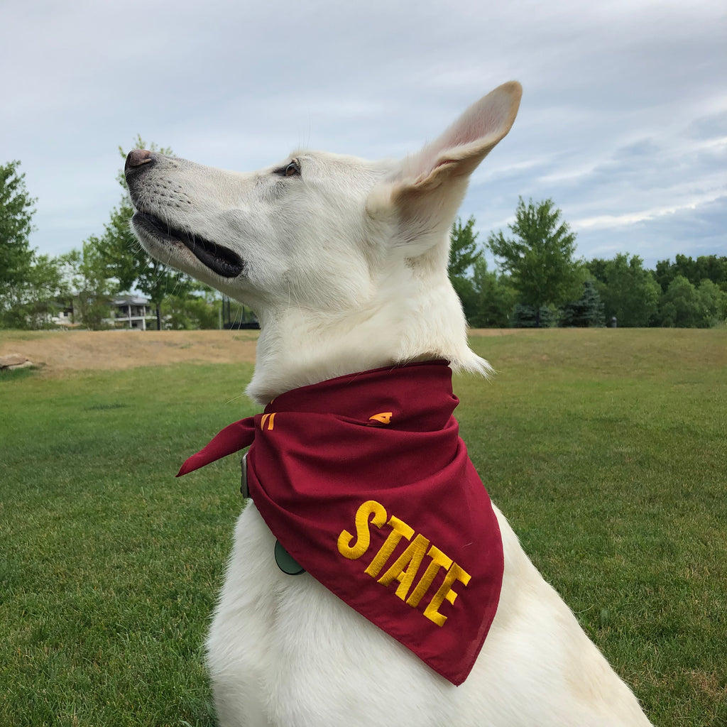 white german shepherd glancing into the distance wearing a red bandana with state embroidered in gold on corner small IA printed throughout background
