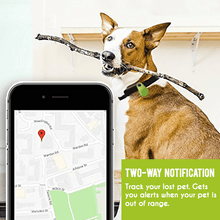 Load image into Gallery viewer, Pets GPS Tracker & Activity Monitor