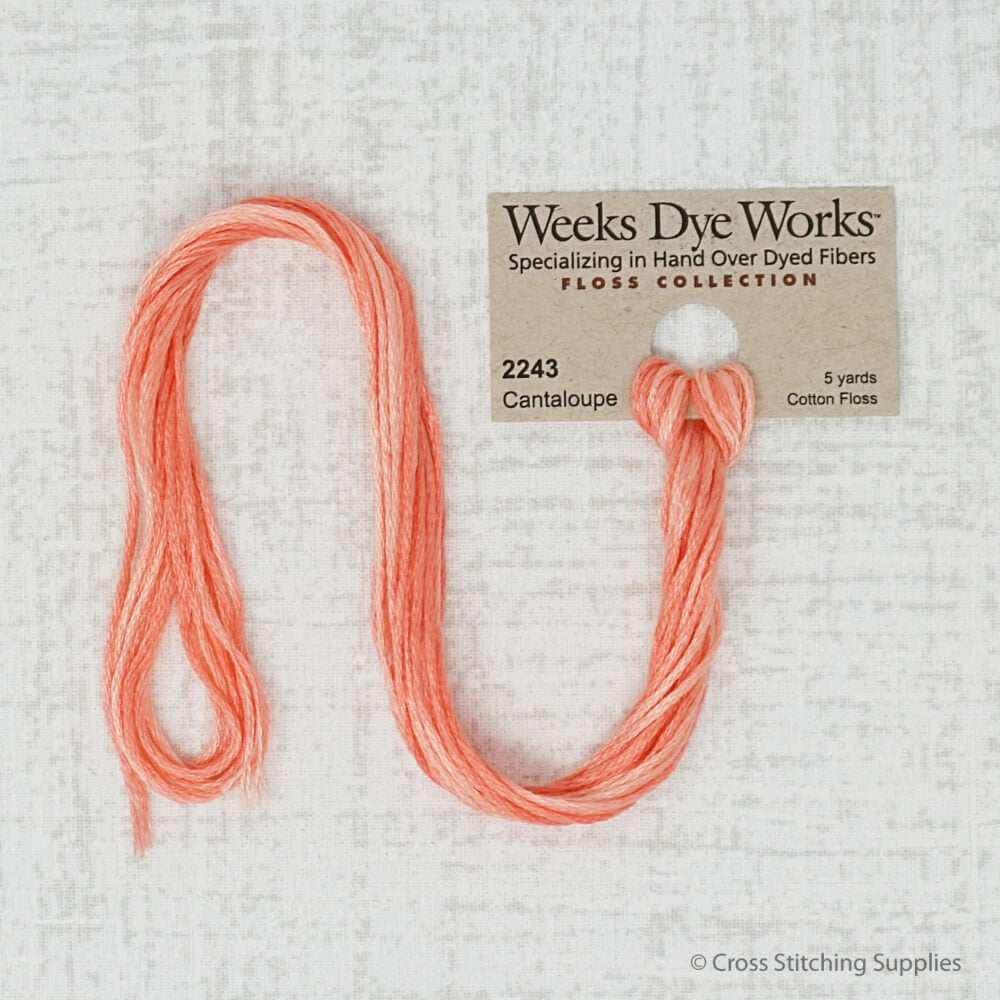 Cantaloupe Weeks Dye Works embroidery thread