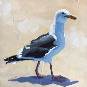 Seagull XII - 6x6