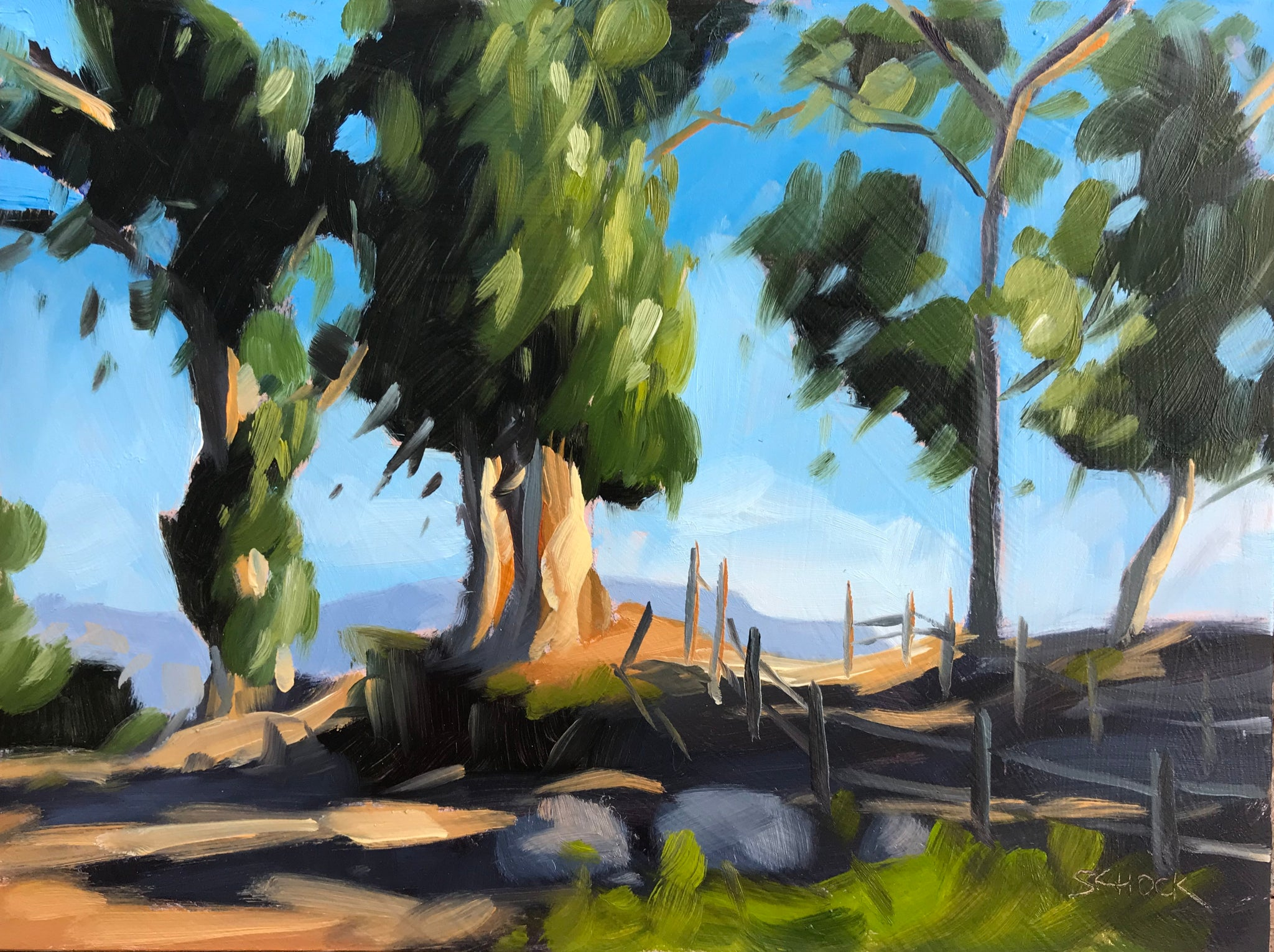 Escondido Park Trees - 6x8
