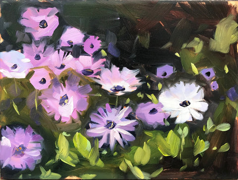 Backyard Daisies Plein Air 6x8