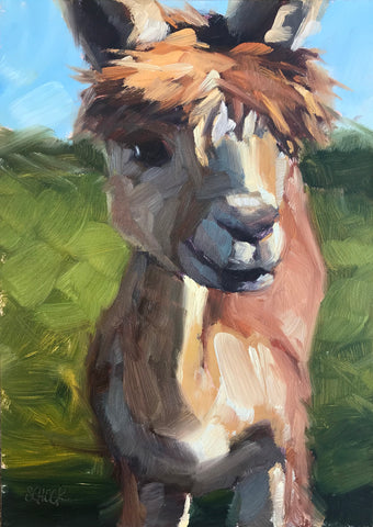 Friendly Alpaca - 5x7