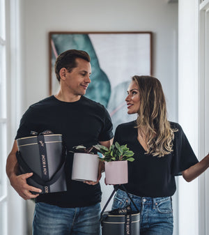 plant delivery gift melbourne indoor plants