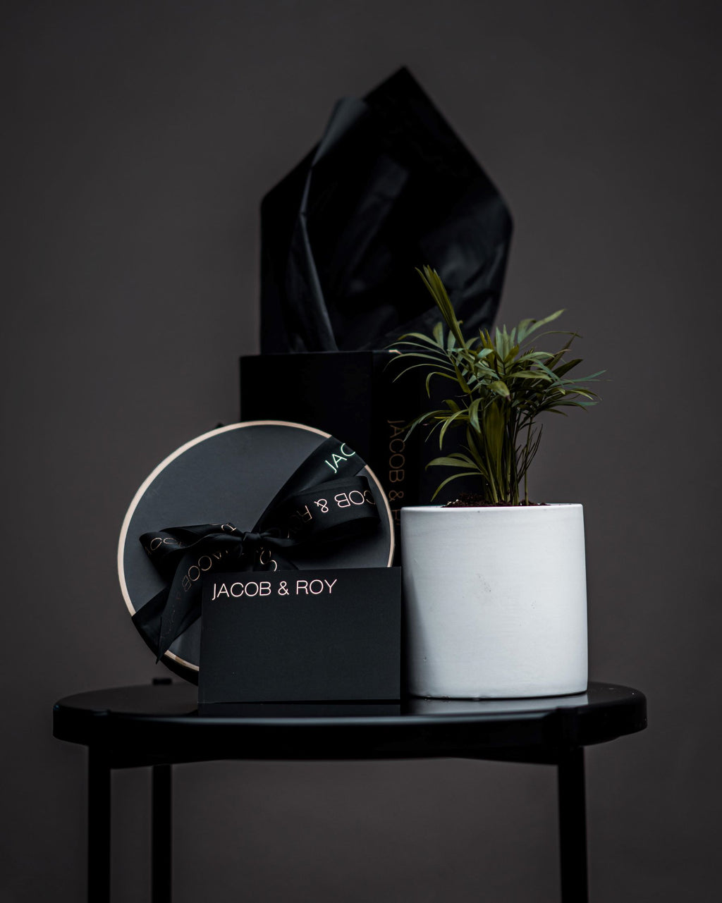 Lush Parlour Palm in matte black or white pot