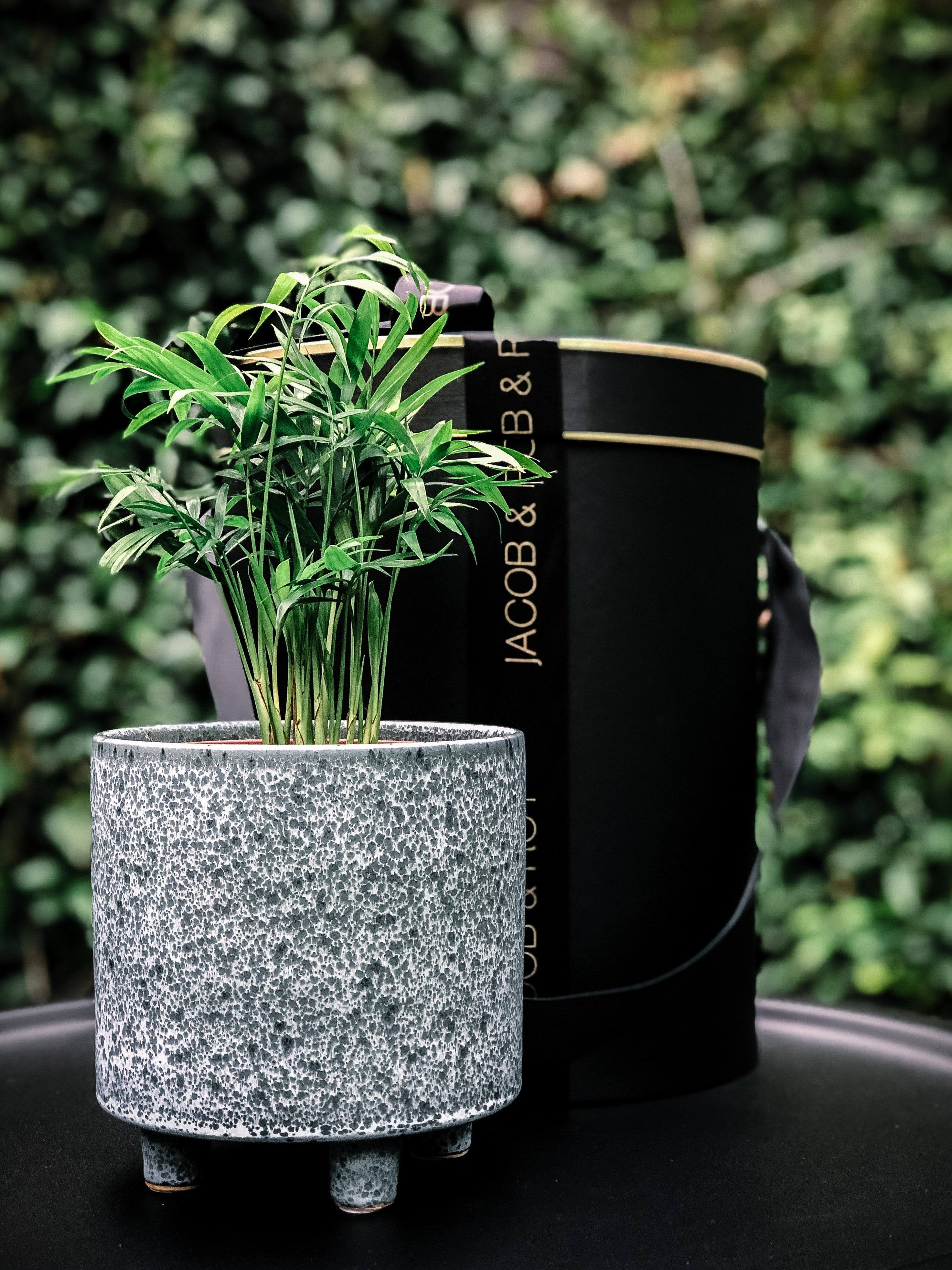 Stand out speckled blue pot with various plant options