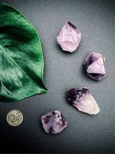 Amethyst Crystal - Indoor Plant & Gifts Delivery Australia