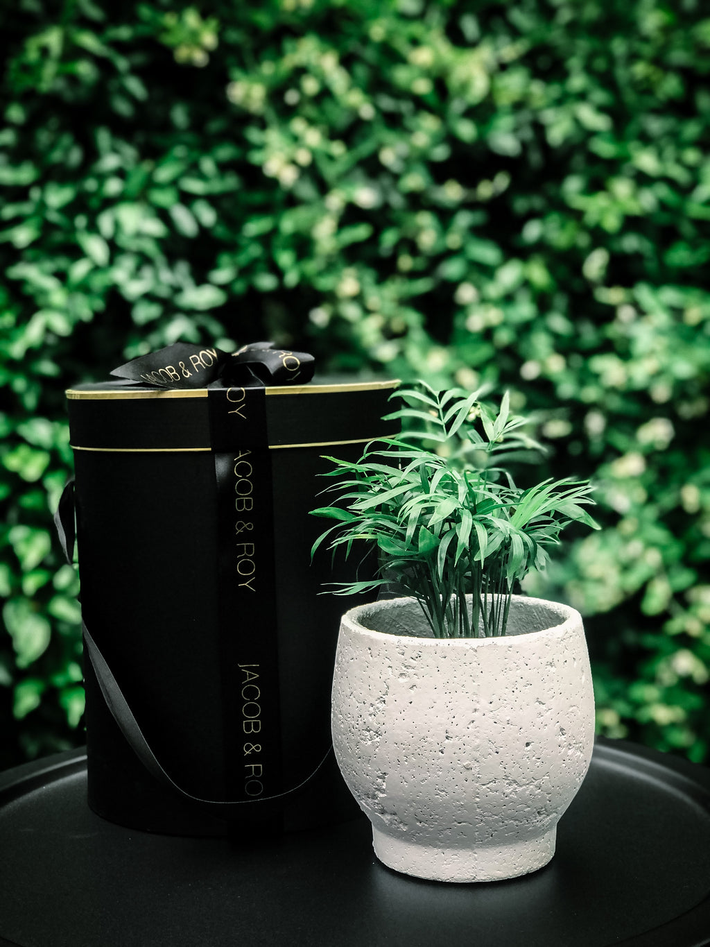 NEW- Byron pot with various plant options (Delivery within 20km of Melbourne CBD)