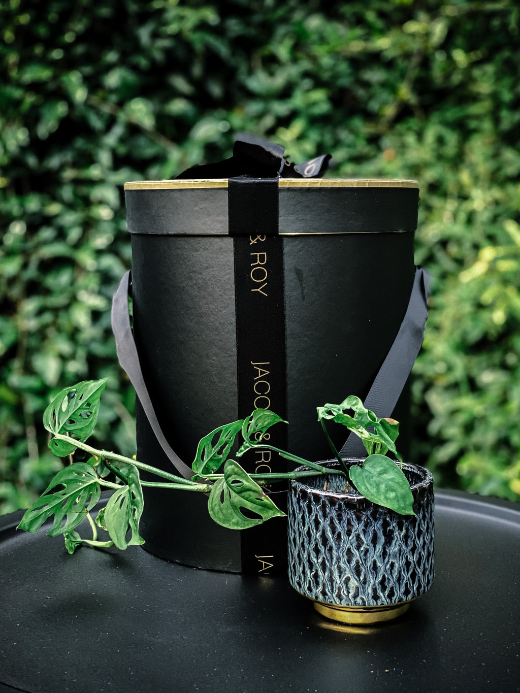 Handmade Textured Pot with Plant Options - Indoor Plant & Gifts Delivery Australia