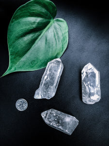 Clear Quartz Stone - Indoor Plant & Gifts Delivery Australia