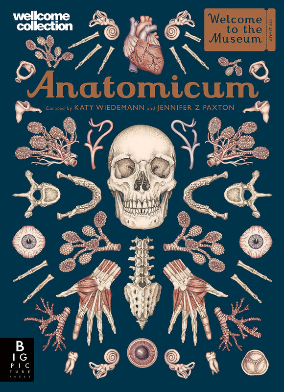 Anatomicum: Welcome to the Museum